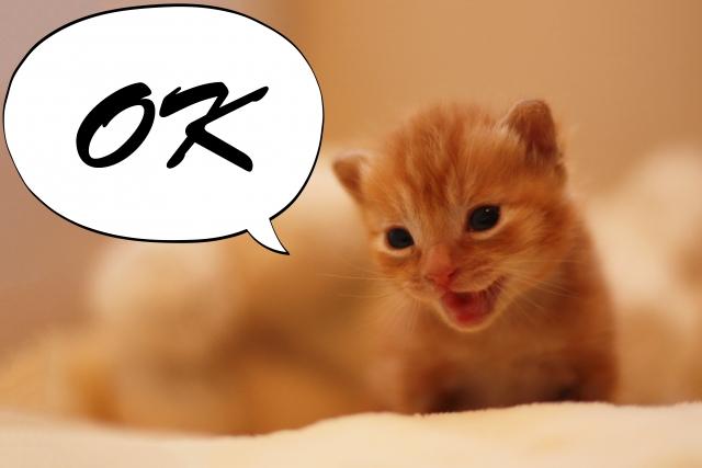 【今日の成績】12/4(水)-4.3pips FX曲がり王シグナルの成績! 勝てる無料FXシグナル配信